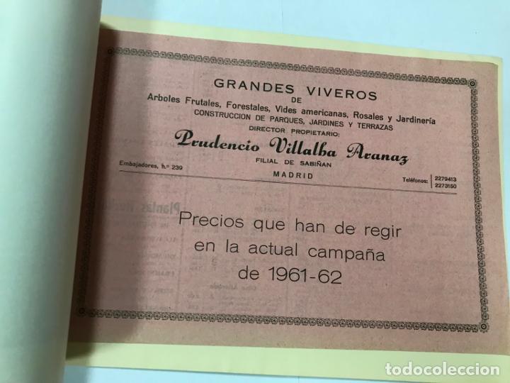 Catálogos publicitarios: CATALOGO GENERAL VIVEROS PRUDENCIO VILLALBA ARANAZ, 1961-62.- MADRID. - Foto 8 - 178058663