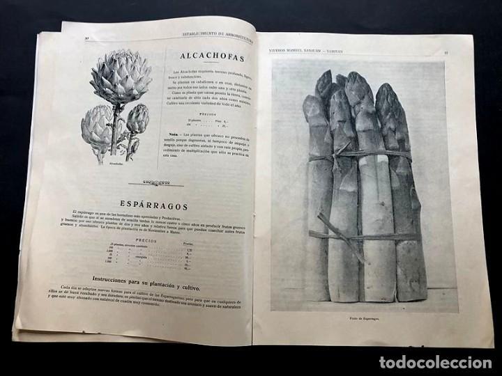 Catálogos publicitarios: CATALOGO GENERAL / VIVEROS MANUEL SANJUAN / AÑOS 30 / SABIÑAN ( ZARAGOZA ) 80 PAGINAS ILUSTRADAS - Foto 5 - 202005783