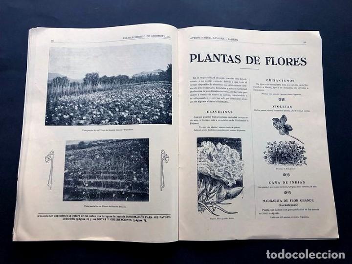 Catálogos publicitarios: CATALOGO GENERAL / VIVEROS MANUEL SANJUAN / AÑOS 30 / SABIÑAN ( ZARAGOZA ) 80 PAGINAS ILUSTRADAS - Foto 6 - 202005783