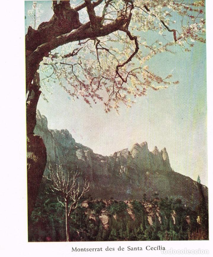 """Catálogos publicitarios: 1954 Folleto Publicitario del libro """"Les Terres Catalanes"""" Pere Blasi todo sin grapar fotos y texto - Foto 2 - 221748461"""