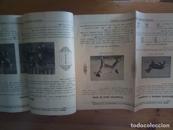 Catálogos publicitarios: Antiguo catálogo venta de perros exportación Alemania - Foto 7 - 277474138