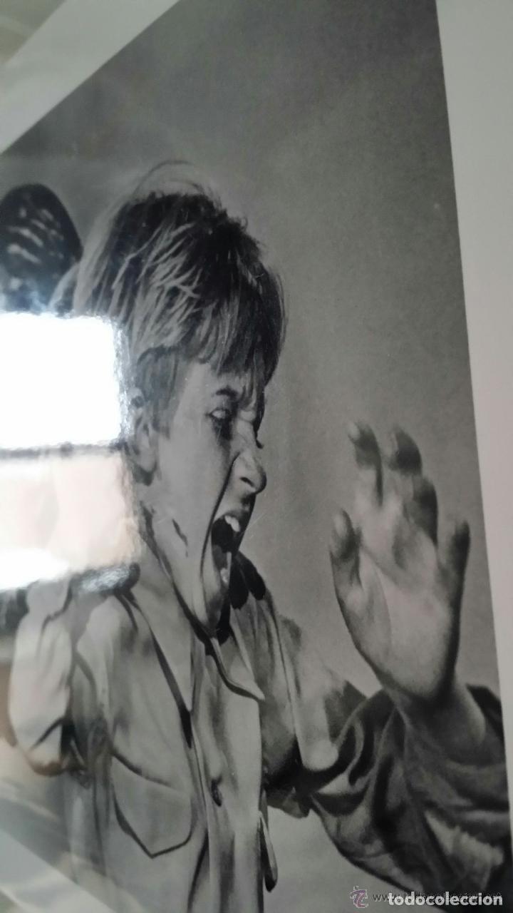 Cine: LOS PAJAROS, de A. Hitchcock: autógrafo cartel diseño de Verónica CARTWRIGHT y fotografía numerada - Foto 6 - 82824404