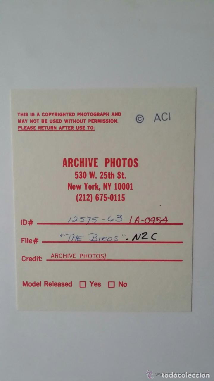 Cine: LOS PAJAROS, de A. Hitchcock: autógrafo cartel diseño de Verónica CARTWRIGHT y fotografía numerada - Foto 7 - 82824404