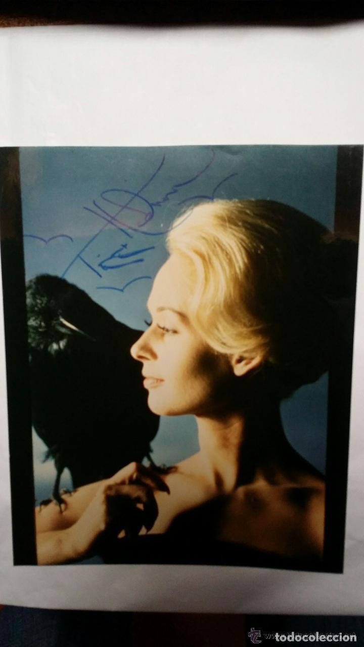 Cine: LOS PAJAROS, DE A. HITCHCOCK: AUTÓGRAFO de Tippi Hedren - Foto 5 - 82829816