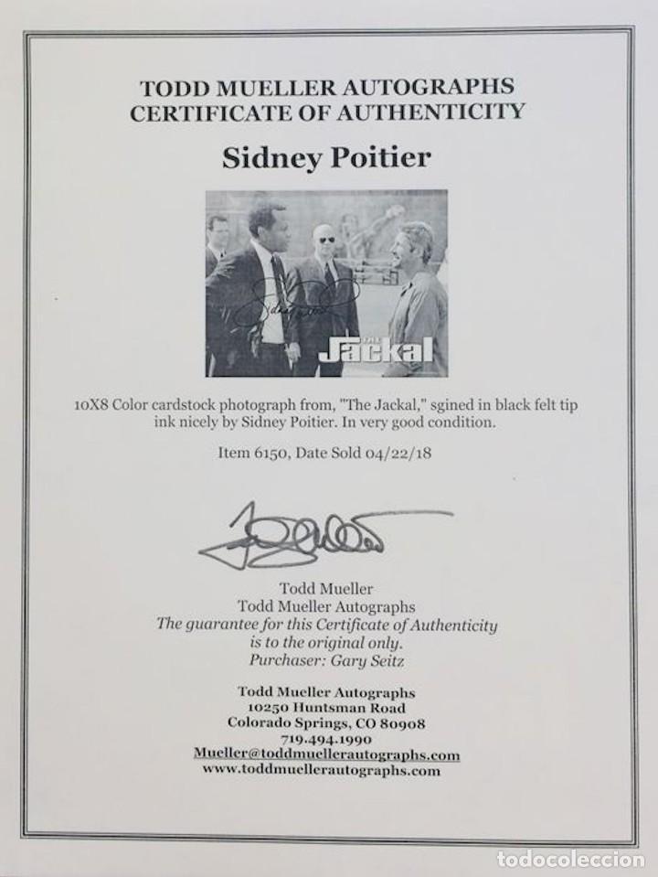 Cine: SIDNEY POTIER - AUTOGRAFO ORIGINAL EN FOTO ( 20 x 25 cm ) - Con certificado DE AUTENTICIDAD - Foto 5 - 126471635