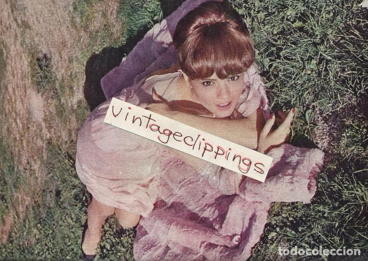Cine: SOLEDAD MIRANDA 1966 photo 11x15cm sexy candid spain actress foto - Foto 1 - 147328170