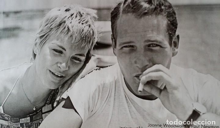 Cine: Joseph L. Mankiewicz, AUTOGRAFO enmarcado con lámina / 36 laminas Historia del Cine, 1984 - Foto 8 - 190339346