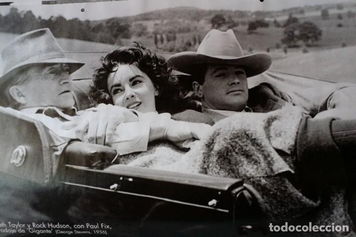 Cine: Joseph L. Mankiewicz, AUTOGRAFO enmarcado con lámina / 36 laminas Historia del Cine, 1984 - Foto 13 - 190339346