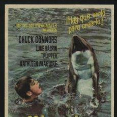 Cine: P-2831- MI AMIGO FLIPPER (LUKE HALPIN - CHUCK CONNORS - CONNIE SCOTT - JANE ROSE). Lote 23056408
