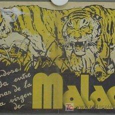 Cine: MALACA PROGRAMA PASQUIN CIFESA CINE DOCUMENTAL. Lote 13313542