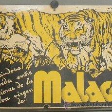 Cine: MALACA PROGRAMA PASQUIN CIFESA CINE DOCUMENTAL. Lote 26062533