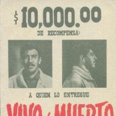 Cine: VIVO O MUERTO. Lote 31884319