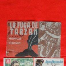 Cine: LA FUGA DE TARZAN, 3, DOBLE, CARTONCILLO Y SENCILLO, JOHNNY WEISSMULLER, PUBLI CAPITOL SELLO RIUDOMS. Lote 33362436