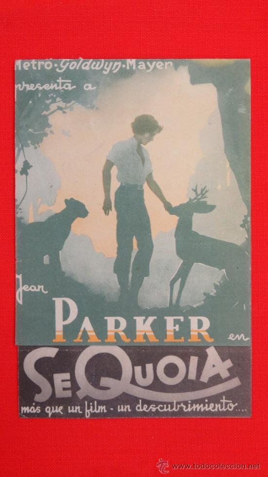 SEQUOIA, DOBLE MGM, JEAN PARKER, , CON PUBLICIDAD CINEMA VALLS (Cine - Folletos de Mano - Drama)