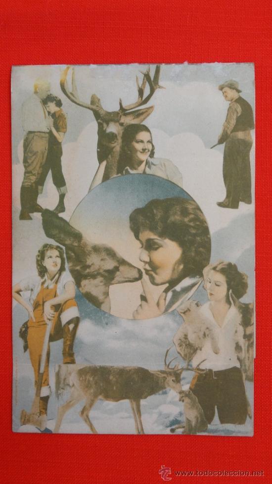 Cine: SEQUOIA, DOBLE MGM, JEAN PARKER, , CON PUBLICIDAD CINEMA VALLS - Foto 3 - 35841114