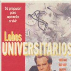 Cine: LOBOS UNIVERSITARIOS. TARJETA POSTAL DE LAUREN FILMS.. Lote 40957441
