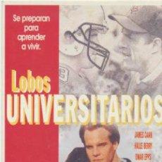 Cine: LOBOS UNIVERSITARIOS. PROGRAMA TARJETA POSTAL DE LAUREN FILMS.. Lote 41568847