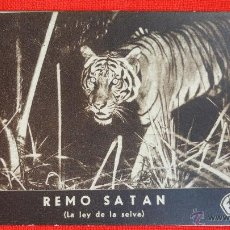Cine: REMO SATAN, LA LEY DE LA SELVA, TARJETA FOX ORIGINAL, EXCTE. ESTADO, SIN PUBLICIDAD. Lote 41760470