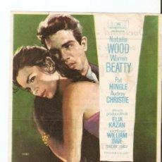 Cine: ESPLENDOR EN LA YERBA - NATALIA WOOD, WARREN BEATTY, PAT HINGLE - DIRECTOR ELIA KAZAN - MAC. Lote 48875074