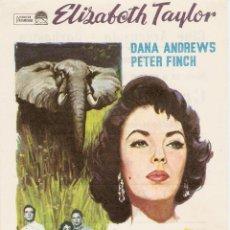 Cine: LA SENDA DE LOS ELEFANTES - ELIZABETH TAYLOR, DANA ANDREWS, PETER FINCH - DIRECTOR WILLIAM DIETERLE . Lote 51099200
