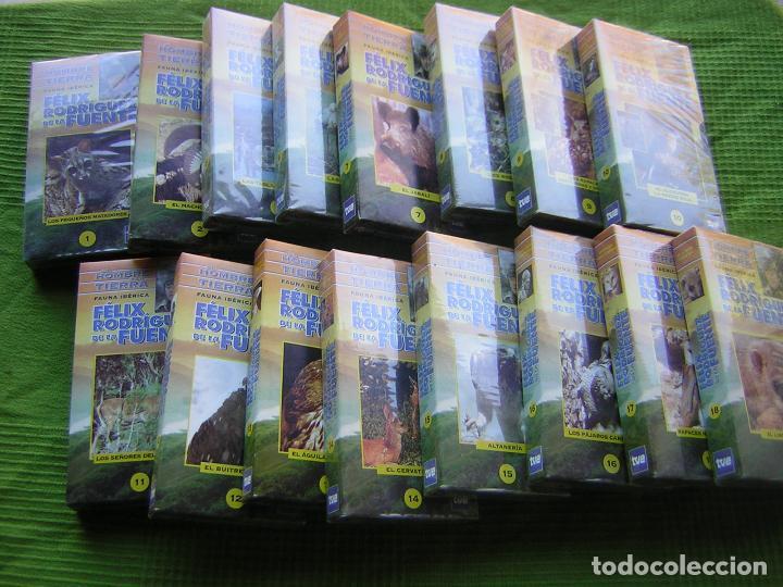16 DOCUMENTALES DE EL HOMBRE Y LA TIERRA EN VHS (Cine - Folletos de Mano - Documentales)