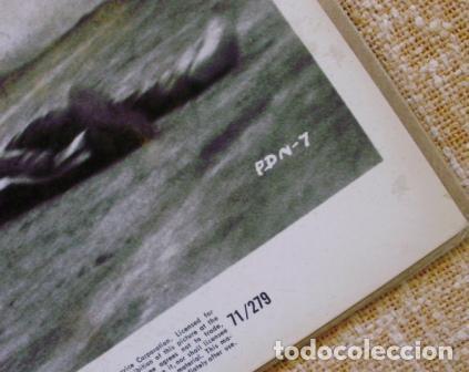 Cine: Photo Print , Private Duty Nurses, U.S.A., 1971, New World Pictures,71/279,PDN-7 - Foto 7 - 88818072