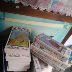 Cine: LOTE DE 13 VHS EL MUNDO DE SURVIVAL LA GACETA DE CANARIAS. Lote 104802359