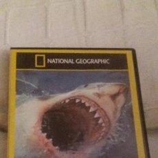 Cine: DVD DOCUMENTAL TIBURONES -ALERTA TIBURONES-NATIONAL GEOGRAPHIC-AÑOS 80,AÑOS 90. Lote 108781599