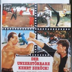 Cine: KARATE TIGER 2 FOLDED MOVIE POSTER, A1,MAX THAYER,LOREN AVEDON,GERMAN. Lote 108846295