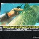 Cine: F1 LOTE DE 6 CARTELE DE LA PELICULA BERMUDAS LA CUEVA DE LOS TIBURONES AÑOS 70-80. Lote 113004867