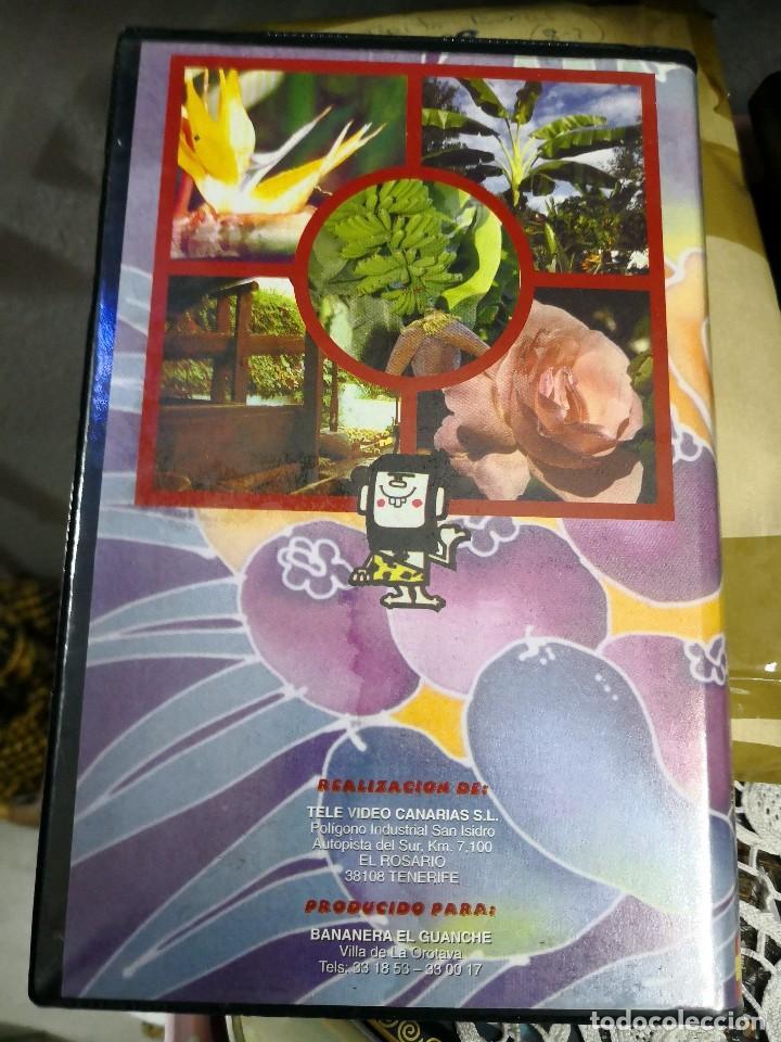 Cine: Video VHS AÑO 1995 BANANERA EL Guanche más libro de regalo - Foto 2 - 113629427