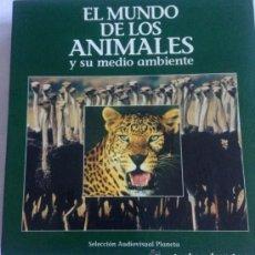 Cine: EL MUNDO DE LOS ANIMALES Y SU MEDIO AMBIENTE TIME/LIFE FAUNA SALVAJE BBC LOS CACHORROS LASER DISC. Lote 132072810