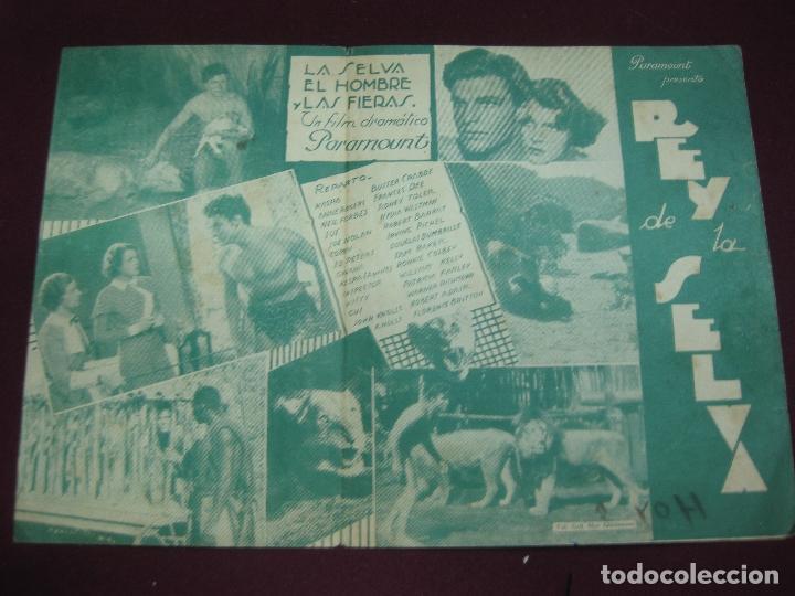 PROGRAMA DE CINE. LA SELVA , EL HOMBRE Y LAS FIERAS. REY DE LA SELVA. BUSTER CRABBE. CINE DORE. (Cine - Folletos de Mano - Aventura)