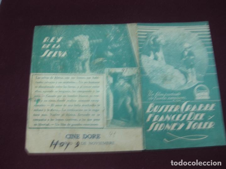 Cine: PROGRAMA DE CINE. LA SELVA , EL HOMBRE Y LAS FIERAS. REY DE LA SELVA. BUSTER CRABBE. CINE DORE. - Foto 2 - 132724982