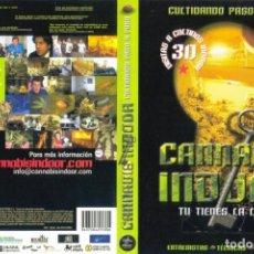 Cine: CANNABIS INDOOR - TU TIENES LA LLAVE - DOCUMENTAL DE CULTIVO PASO A PASO - DVD. Lote 142024082