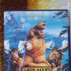 Cine: DVD HERMANO OSO. Lote 144477718