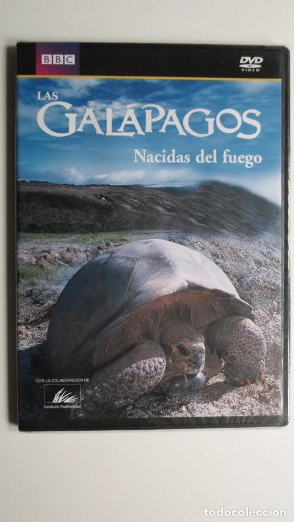 LAS GALÁPAGOS (NACIDAS DEL FUEGO) [DVD BBC PRECINTADO] (Cine - Folletos de Mano - Documentales)