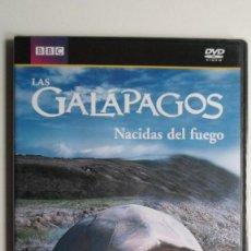 Cine: LAS GALÁPAGOS (NACIDAS DEL FUEGO) [DVD BBC PRECINTADO]. Lote 147568226