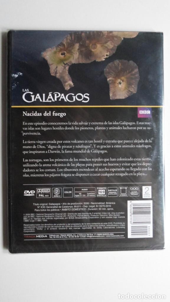 Cine: LAS GALÁPAGOS (NACIDAS DEL FUEGO) [DVD BBC PRECINTADO] - Foto 2 - 147568226