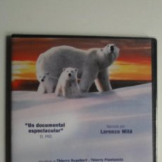Cine: PLANETA BLANCO [DVD PRECINTADO]. Lote 147569002