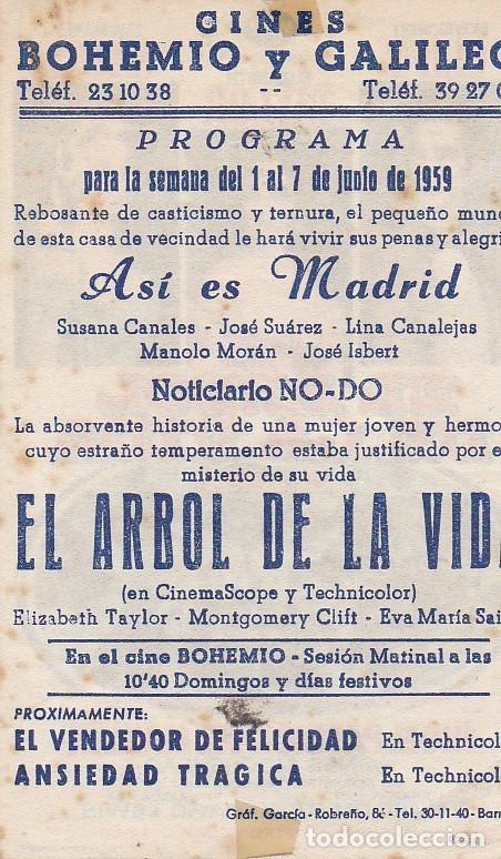 Cine: EL ÁRBOL DE LA VIDA - CINES BOHEMIO Y GALILEO - Foto 2 - 160605922