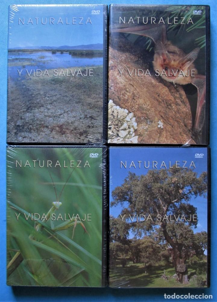 Cine: NATURALEZA Y VIDA SALVAJE (COMPLETA) 19 DVDS PRECINTADOS - SALVAT - 1999 (VER 6 FOTOS) - Foto 2 - 168174272
