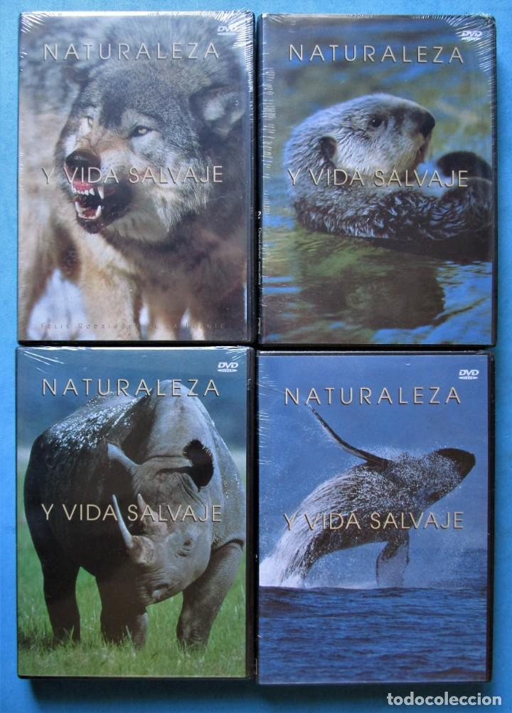 Cine: NATURALEZA Y VIDA SALVAJE (COMPLETA) 19 DVDS PRECINTADOS - SALVAT - 1999 (VER 6 FOTOS) - Foto 4 - 168174272