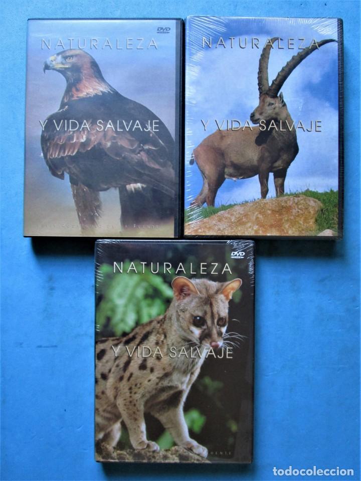 Cine: NATURALEZA Y VIDA SALVAJE (COMPLETA) 19 DVDS PRECINTADOS - SALVAT - 1999 (VER 6 FOTOS) - Foto 6 - 168174272