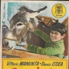 Cine: PROGRAMA DE CINE - PEPPINO Y VIOLETA - VITTORIO MANUNTA, DENIS O'DEA - CINE GRAN ALBÉNIZ (MÁLAGA). Lote 177505848