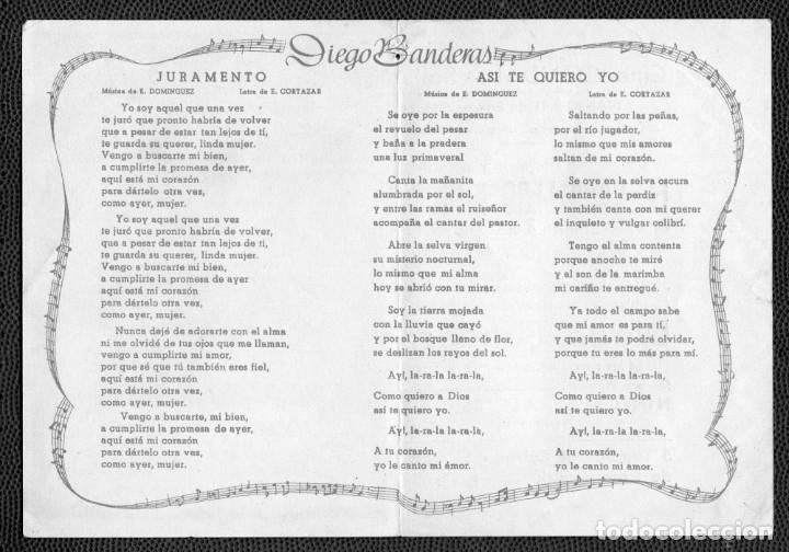 Cine: DIEGO BANDERAS -Programa doble - ORIGINAL -Publicidad en reverso- - Foto 2 - 178949541