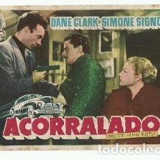 Folhetos de mão de filmes antigos de cinema: PROGRAMA CINE ACORRALADO DANE CLARK SIMONE SIGNDRET. Lote 217197118