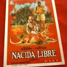Cine: NACIDA LIBRE (FILM BRITANICO 1966) FOLLETO DE MANO - SIN PUBLICIDAD - BORN FREE - JOHN BARRY. Lote 218403073