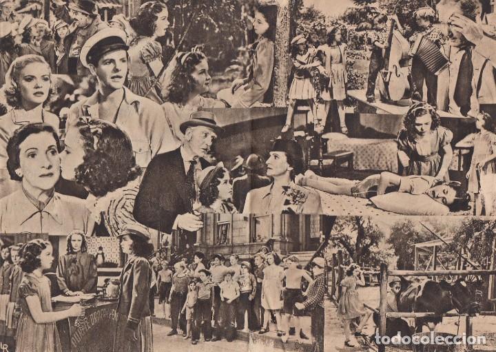 Cine: Niña revoltosa. Programa de cine. Doble con publicidad. Cine Gades. Cádiz. - Foto 2 - 219286976