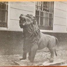 Foglietti di film di film antichi di cinema: CINEMA CONCERT- 1919- EN LAS GARRAS DEL LEON- EMOCIONANTE SERIE EN 18 EPISODIOS. Lote 219518626